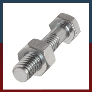 Stainless Steel Nuts Hex SS Nuts